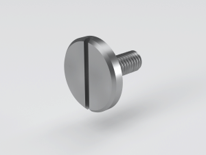 Slotted pan head screw with large head to DIN 921
